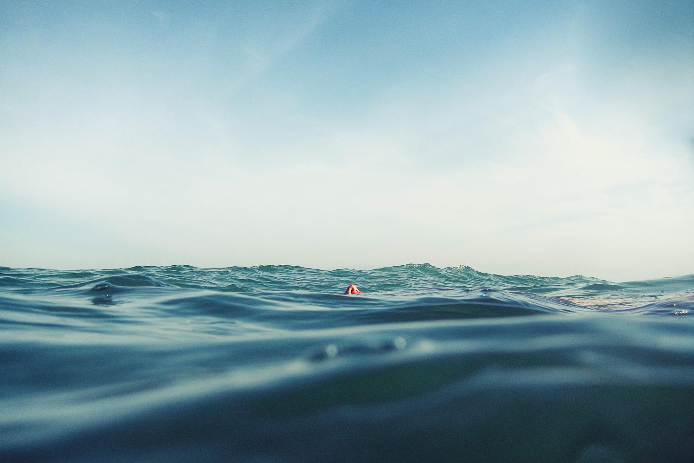 Selected_Ozean_Nase
